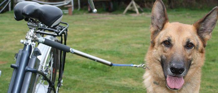Велоспрингер крепление собаки к велосипеду