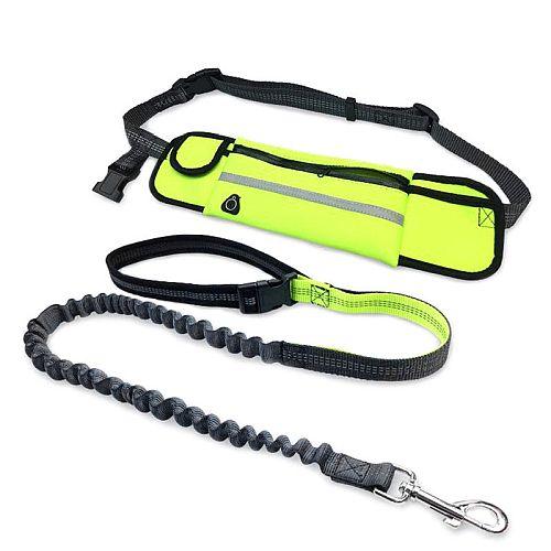 Поводок для бега с собакой с сумкой на поясе