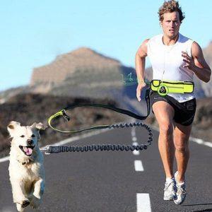 Поводок для бега с собакой с чехлом