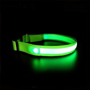 Светящийся ошейник PET5200 зеленый