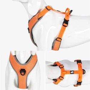 Шлейка для собак Truelove с мягкой подкладкой. Цвет оранжевый