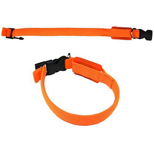 Светящийся ошейник Йорк для маленьких собак оранжевый