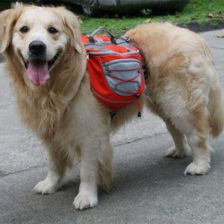 Рюкзак на собаку