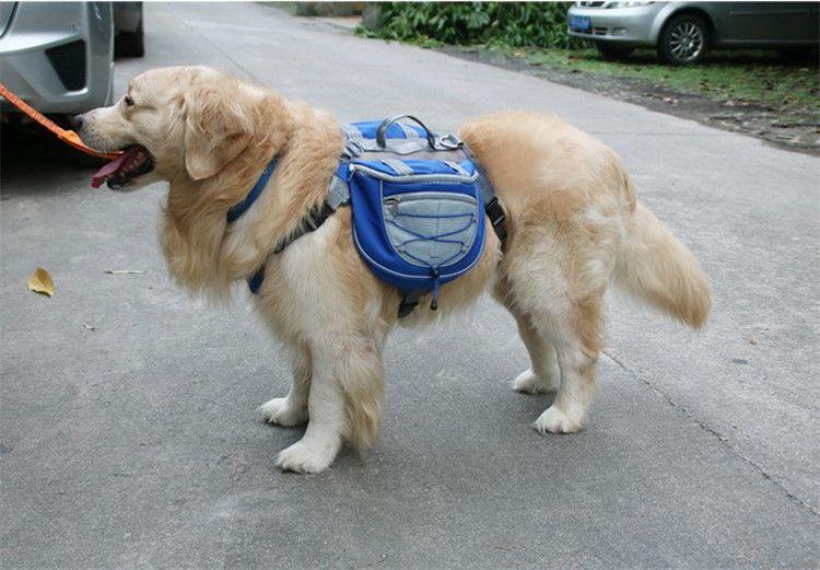 Рюкзак на спину собаке для походов фото синий