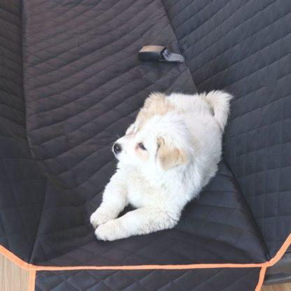 Автогамак стеганный усиленный для любых собак с окантовкой
