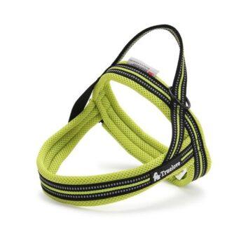 Шлейка для собак светоотражающая зеленая