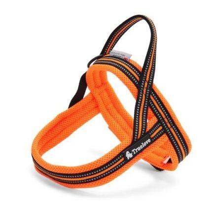 Шлейка для собак светоотражающая оранжевая