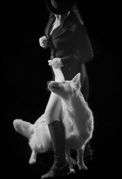 Как круто чувствовать себя частью этой магии — танца пары: человека и собаки
