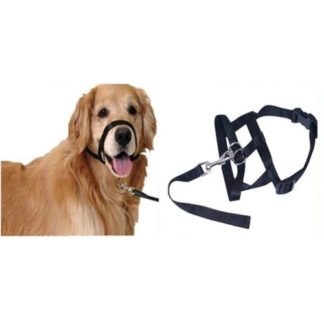 Недоуздок для собаки