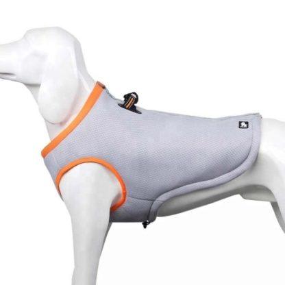 Охлаждающая попона для собак оранжевая вид