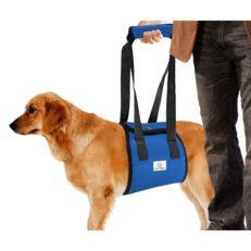 Шлейка поддерживающая для пожилых собак