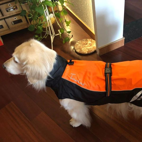Водонепроницаемый жилет для собак светоотражающий фото2