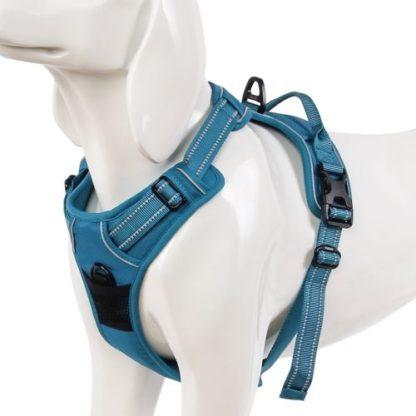 Шлейка для собак с мягкой спинкой и грудью Truelove TLH5651 голубая