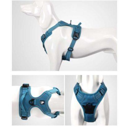 Шлейка для собак с мягкой спинкой и грудью Truelove TLH5651 Общий вид