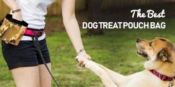 Сумочка для лакомств на пояс для дрессировки собак