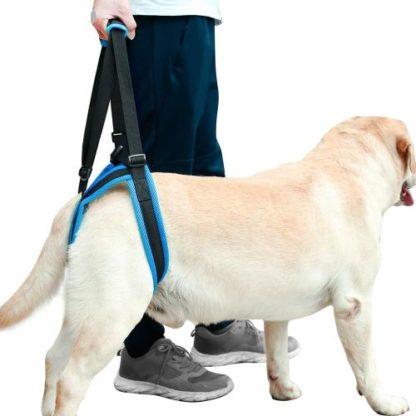 Ходунки поддержка задних лап для собак при движении