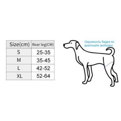 Ходунки для собак размеры
