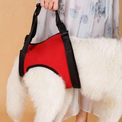 Шлейка для пожилых, травмированных собак задняя часть