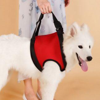 Шлейка для пожилых, травмированных собак передняя часть