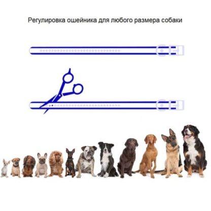 Ошейник для дрессировки собак электронный с антилаем T720 регулируемая длинна