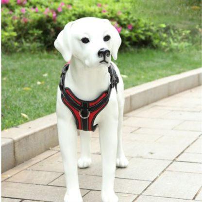 Шлейка для собак V образная с кольцом на груди