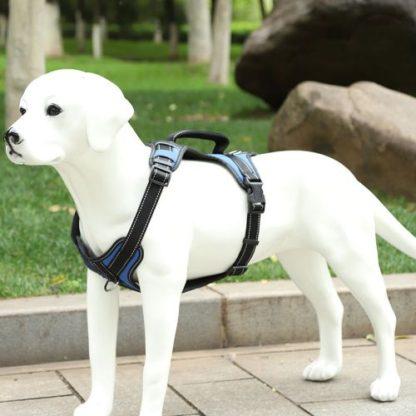 Шлейка для собак V образная, синяя