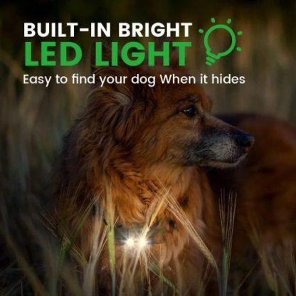 Дрессировочный ошейник для собак T430 подсветка ошейника ночью