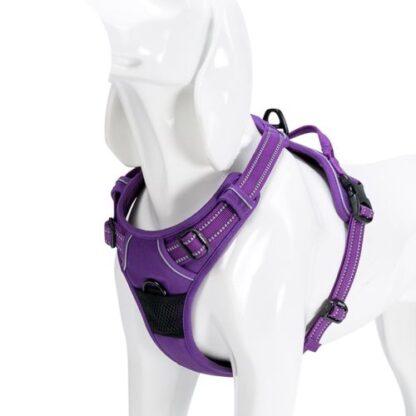 Шлейка для собак с мягкой грудью и спинкой пурпурная