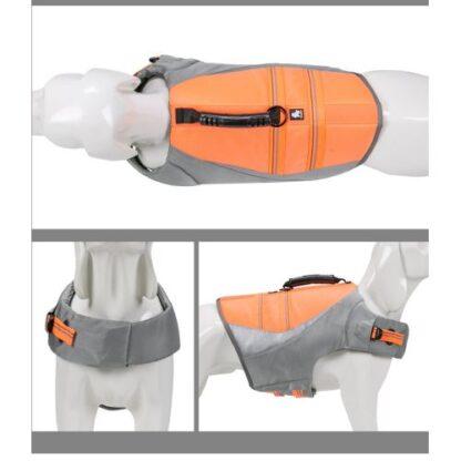 спасательный жилет для собак оранжевый полный вид