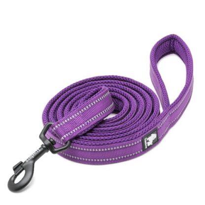 Поводок Пурпурный 2 метра